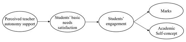 Autonomy Support Psychological Needs Satisfaction School